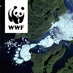 WWF Global Footprint